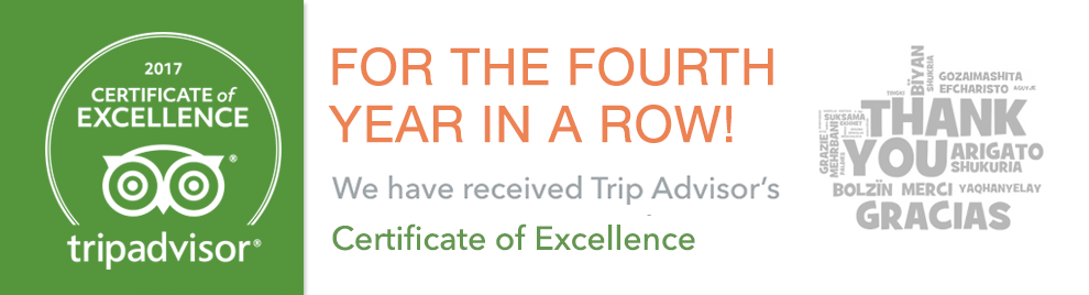 Certificate of Excellence 2017 Trip Advisor