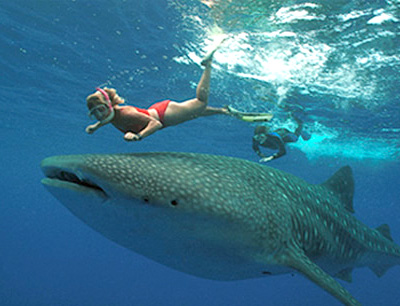 Must do adventure tours in Cancun