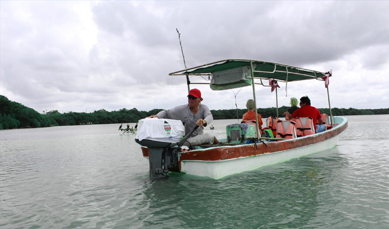 Paseo en bote por la Ria Lagartos