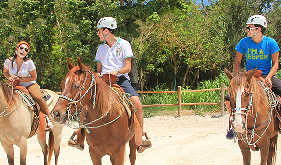 noble horses, friendly guides and relaxing landscapes