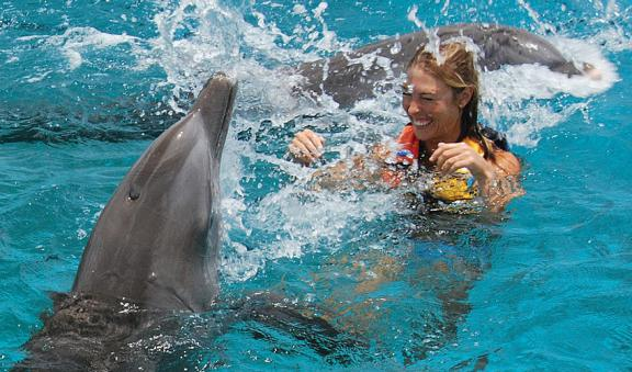 Have fun in the dolphin adventure in Cozumel