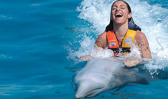 Dolphin Swim Adventure - Cozumel