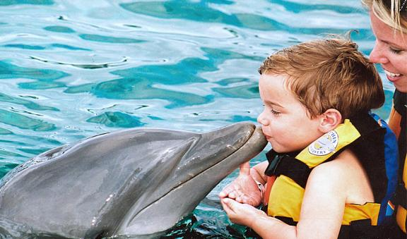 kids kiss a dolphin