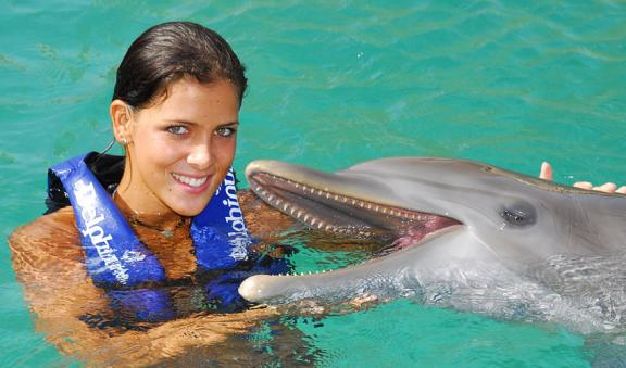 Interact with the friendly dolphins