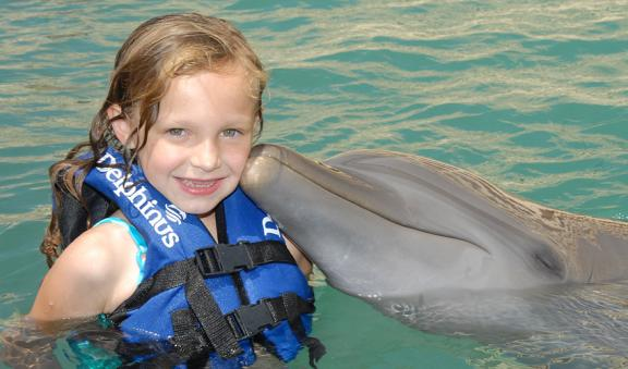 Kids swimming with dolphins