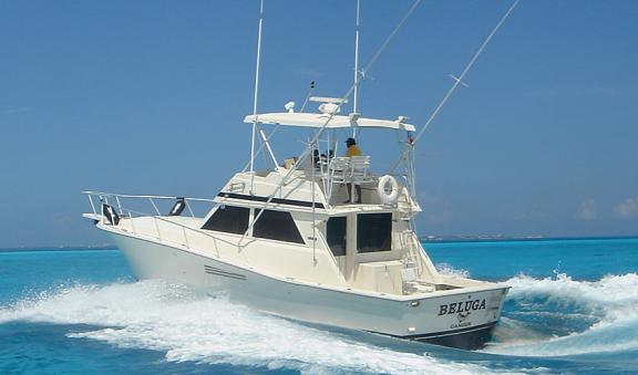 Tour de Pesca en Cancun