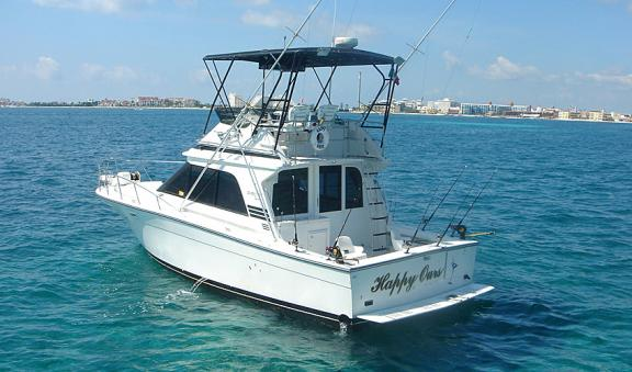 shared tours or rent a private boat