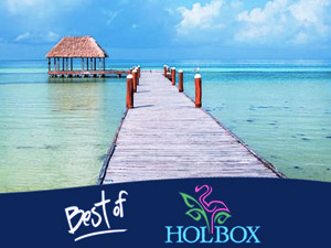 The Best of Holbox