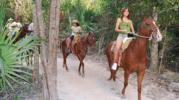 Riding your horse in the exotic jungle