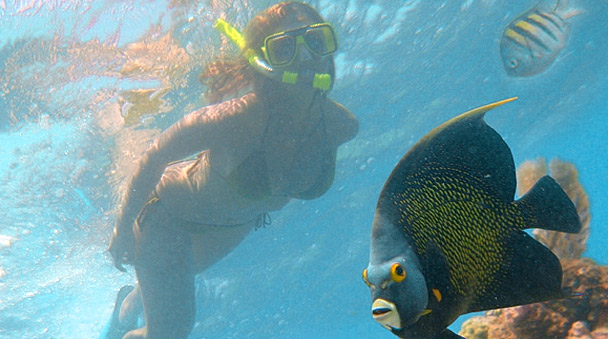 Deluxe Snorkel And Lobster Tour In Maroma Riviera Maya