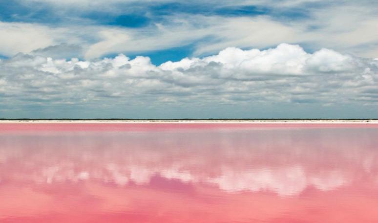 Paisajes rosados en Yucatan