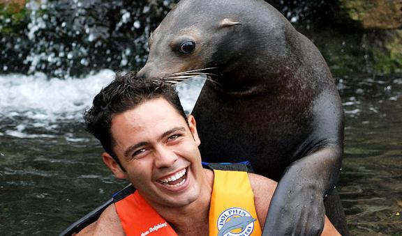 kiss a sealion