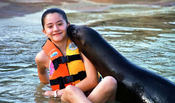 childrens will love sealions