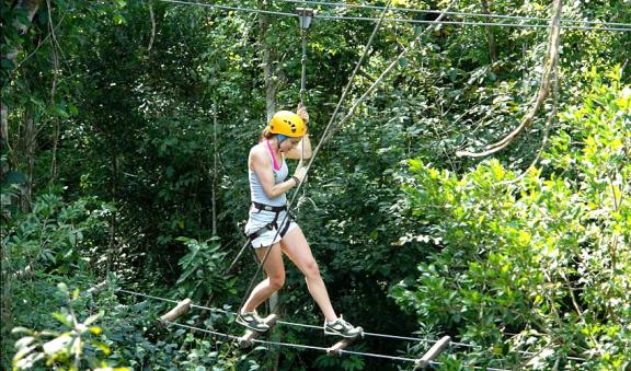 dare to cross selvatica floating bridges
