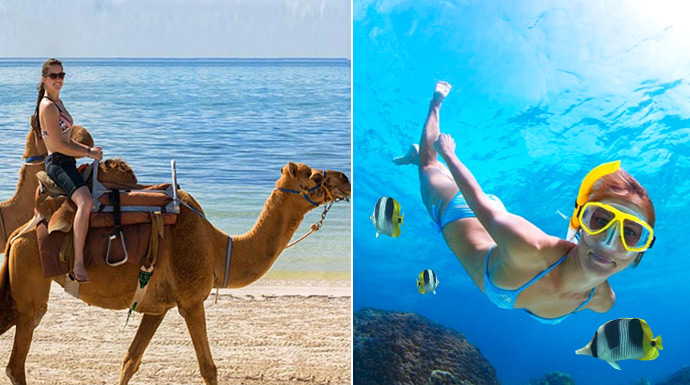 Snorkel reef adventure and Camel Ride in a combo tour