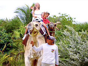 Camel Safari Tour photo