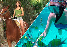 Horseback Ridding and Reef Adventure