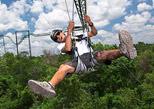 Dare to try the Tarzania zipline at Selvatica