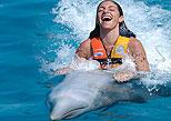 Dolphin Swim Adventure - Cozumel