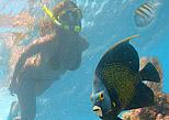 Snorkel in Riviera Maya reef