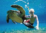 Nado con tortugas un recuerdo inimaginable para sus pequeños