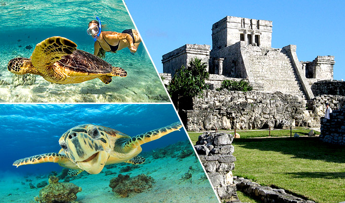 Tulum and Snorkel with Marine Turtles