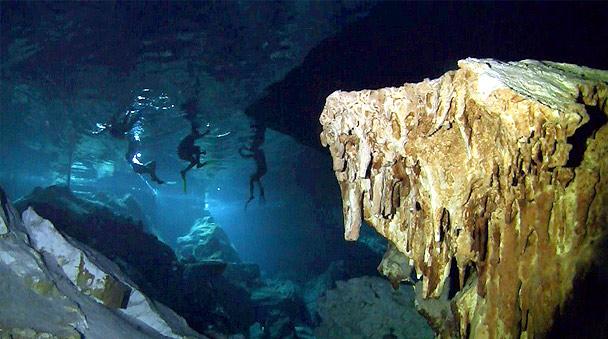 Nado en los cenotes en Akumal en el tour de snorkel