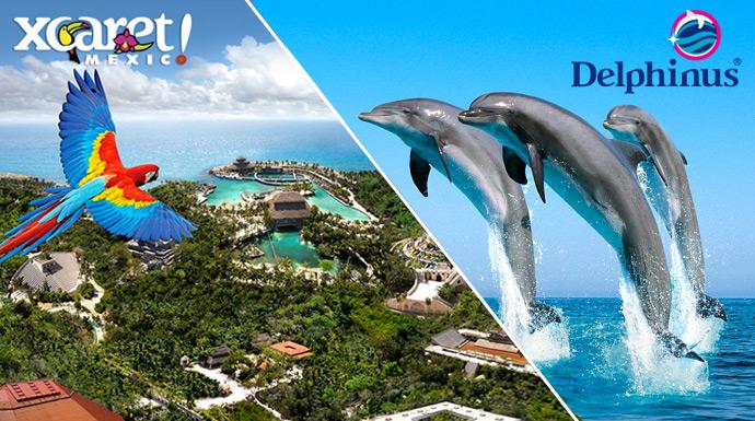 Tour desde Cancun / Riviera Maya