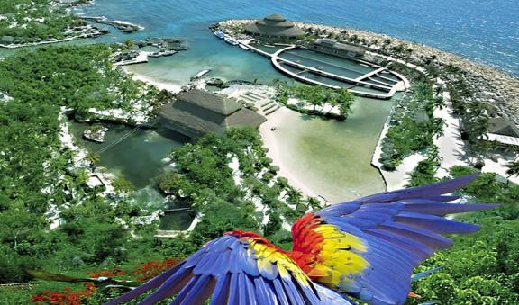 See the macaw flying in Xcaret park
