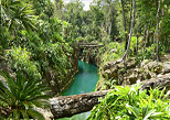 Cenote rivers in Riviera Maya